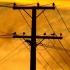 Sute de gospodării fără energie electrică după ce un arbore a rupt un conductor
