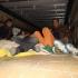 Patruzeci și doi de migranți ascunși într-o cisternă, opriți la frontieră
