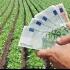 Ajutor de la stat de 3.000 de euro pentru români. Ce condiţii trebuie îndeplinite