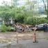 Furtună violentă la Moscova! Urgia a ucis mai multe persoane și a făcut zeci de răniţi