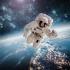 NASA se pregăteşte de o nouă misiune pe Lună.