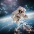 Peste 1000 de oameni pe un loc de astronaut la NASA. Cei selectaţi vor avea ocazia să participe la misiuni pe Lună şi Marte