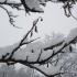 NINGE în România! Zăpada deja s-a depus pe șosea