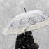 20 județe sub Cod galben de vânt puternic și ninsori