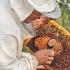 Noaptea minții! Singurul liceu apicol din România, fără clasă de apicultură?!