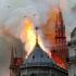 Doar 9% din donațiile promise pentru Catedrala Notre-Dame s-au concretizat!