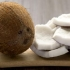 Nuca de cocos, un fruct din Pomul Vieții