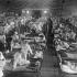 """Nu mai avem """"gripă spaniolă"""", dar avem altele! 147 de milioane de oameni ar putea muri!"""