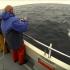 Braconaj la calcan și conducerea unei nave maritime fără brevet, pedepsite de autoritățile constănțene