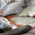 Zeci de tone de peşte, retrase de la vânzare de Protecția Consumatorilor