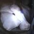 Cetățean din Ialomița, prins la Ostrov cu mașina plină de pește fără documente legale