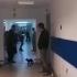 Mic incident cu pisici, mare scandal cu politicieni