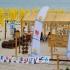 Plajă terapeutică, inaugurată la Mamaia