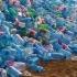 Plasticul poate provoca o boală incurabilă! Tu știi care este?!