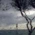 Vreme caldă şi ploi, în mare parte din ţară
