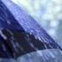 Se schimbă vremea! În Dobrogea, ploaie și vânt