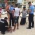 Polițiștii locali au aplicat amenzi de zeci de mii de lei. Vezi pentru ce!