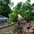PRĂPĂD ÎN ȚARĂ din cauza furtunilor: inundații, copaci căzuţi şi persoane rănite