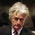 """Radovan Karadzici, supranumit """"măcelarul din Balcani"""", condamnat la închisoare pe viaţă"""