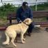 Cum trebuie să procedeze proprietarul al cărui câine e luat de hingheri