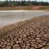 Încălzirea globală ne lovește cu... secetă
