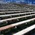 Stadionul din Mangalia va fi modernizat de către Compania Naţională de Investiţii
