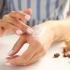 Știi care sunt beneficiile untului de cacao pentru femeile de peste 40 de ani?