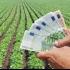 Ministerul Agriculturii începe plata subvențiilor pentru fermieri