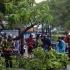 Taifunul Wipha face prăpăd în Vietnam