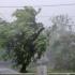 Constanța - Tulcea: Cod galben de vreme severă