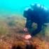 """""""Vestigii subacvatice"""" – proiect inedit ce promovează vestigiile scufundate ale cetății antice Tomis"""