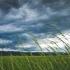 ANM: Ploi torenţiale, vijelii şi grindină, în toată ţara