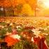 Octombrie, cea mai stabilă, dar și cea mai secetoasă lună a anului