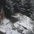Vremea la sfârşit de săptămână: puțin îngheţ, slabe ninsori şi ploi