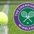 Niculescu şi Begu s-au calificat în optimi, la dublu, la Wimbledon