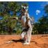 26 iunie - Ziua Naționala a Republicii Madagascar